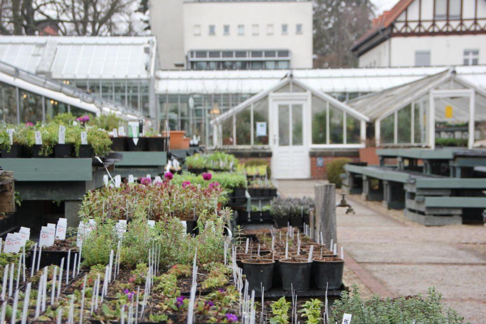 botanicka-zahrada-3