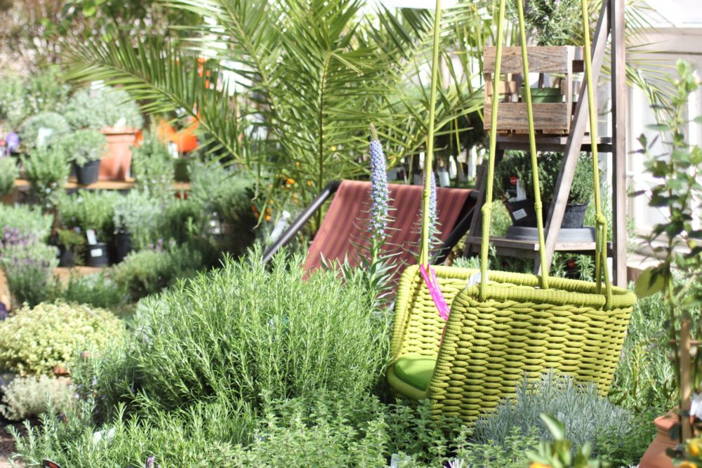 botanicka-zahrada-5