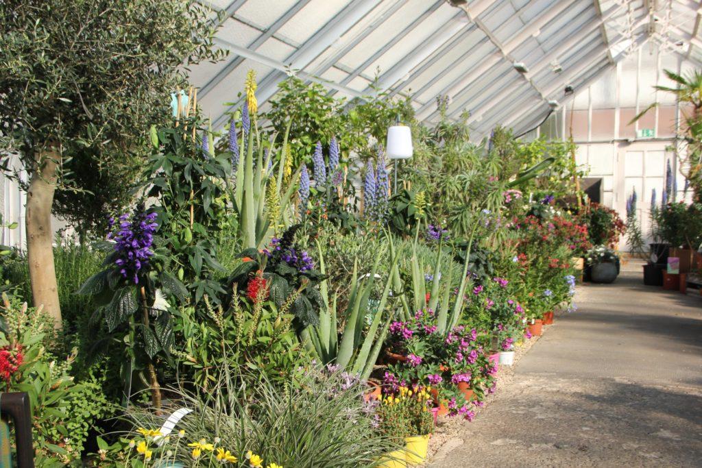 botanicka-zahrada-6