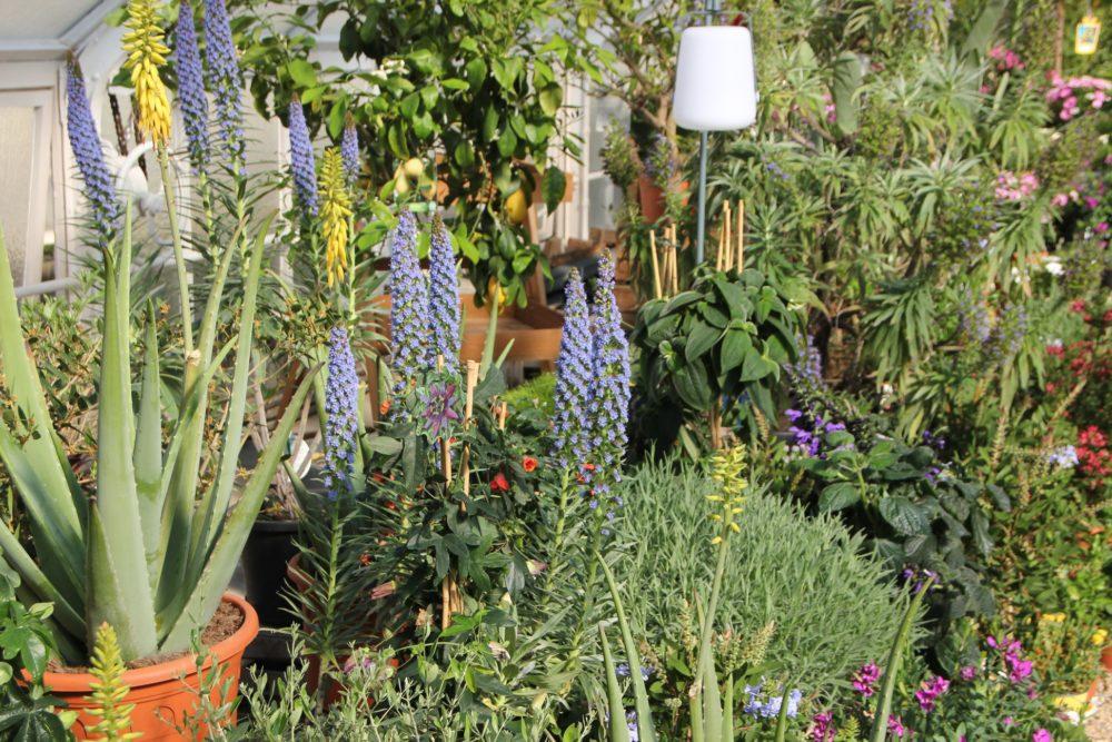 botanicka-zahrada-7