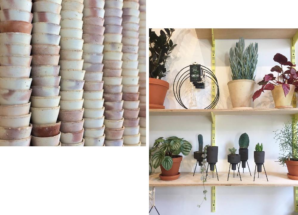 botanical-room-berlin-pokojovky-3