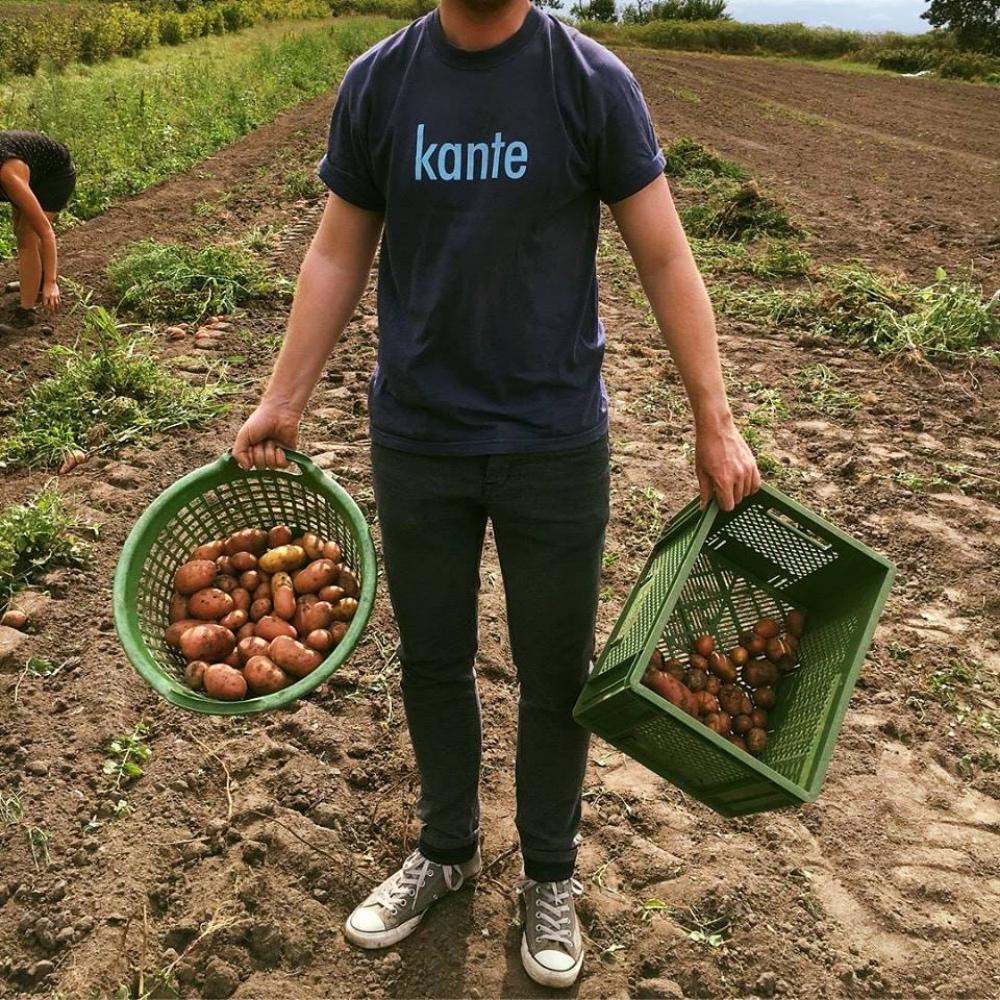 Marktschwärmer-potraviny-farmari-berlin-brambory-3