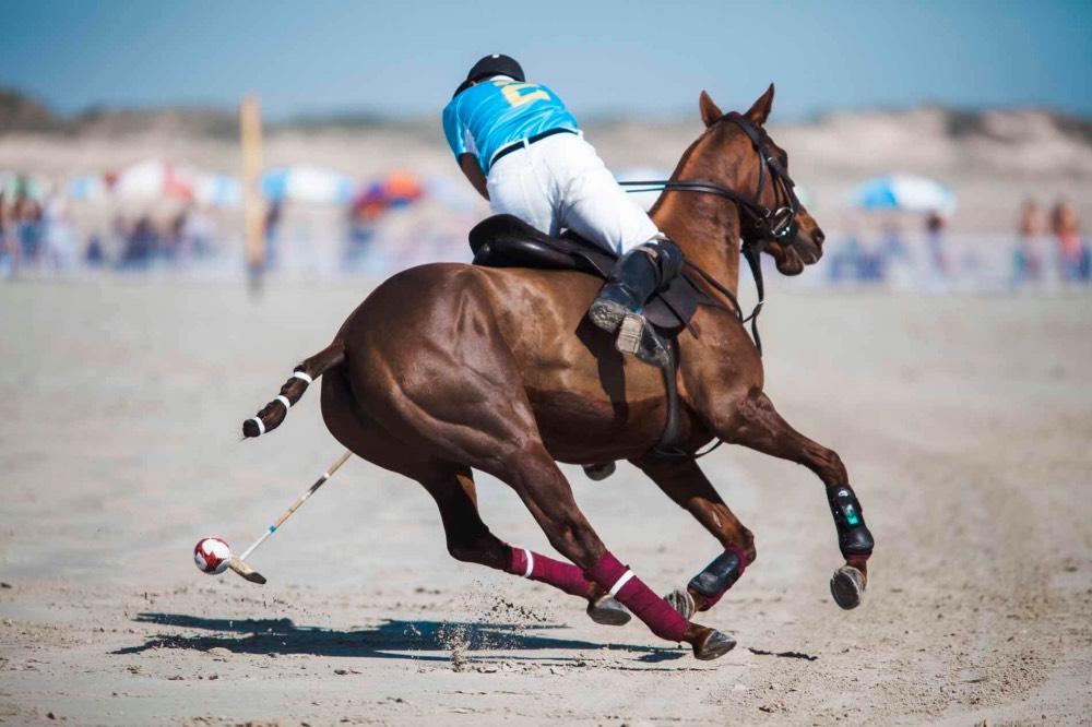 Taxis-Beach-Polo-turnaj-v-cesku-2