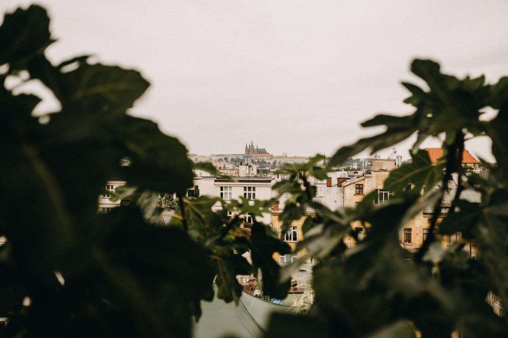 haenke-strecha-lucerny-prednasky