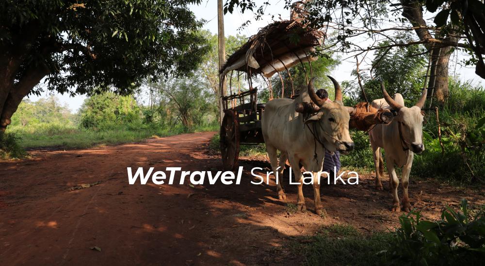 wetravel-srilanka-cestovani